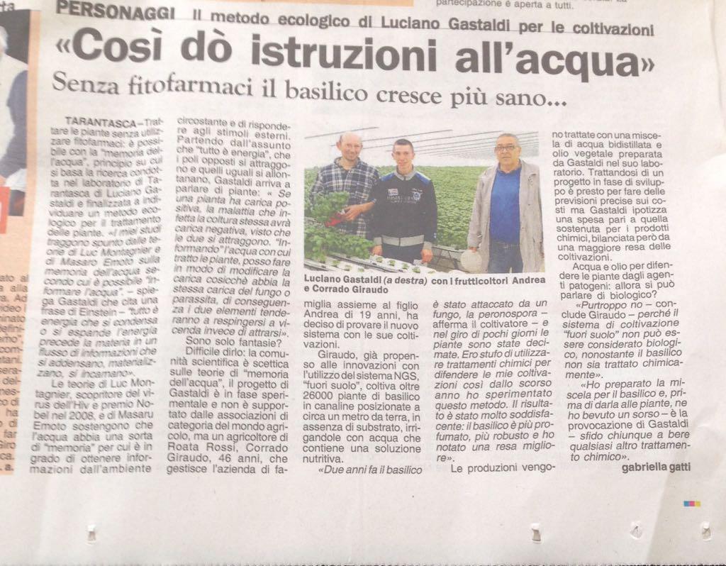 stampa locale